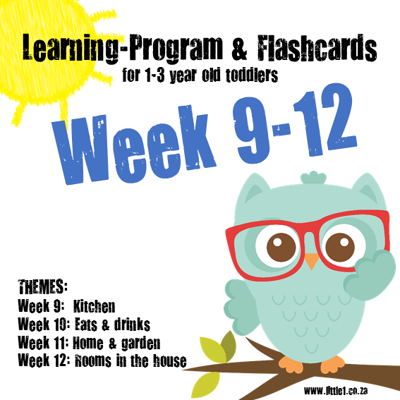 Picture of Learning Program & Flashcards Week 9-12