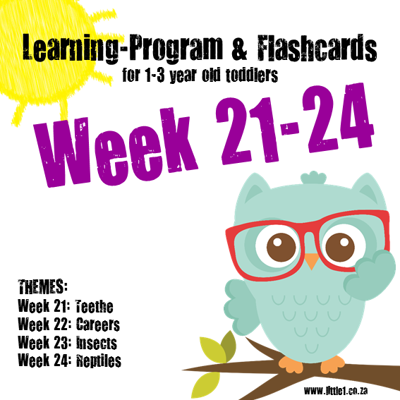 Picture of Learning Program & Flashcards Week 21-24