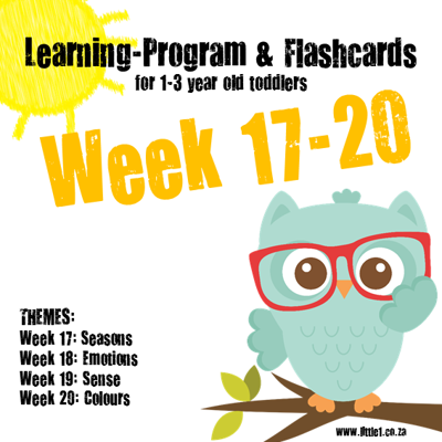 Picture of Learning Program & Flashcards Week 17-20
