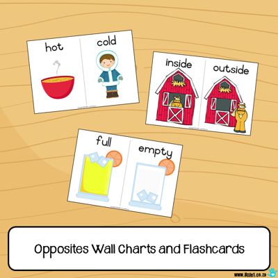 Picture of Flashcards & Wall Charts {Opposites}