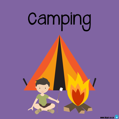 Picture of Theme Activity Book (22) - Camping