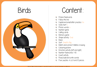 Picture of Theme Activity Book (24) - Birds